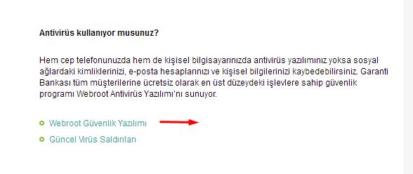 garanti-virus2