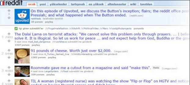 Reddit Nedir? Nasıl Kullanılır?